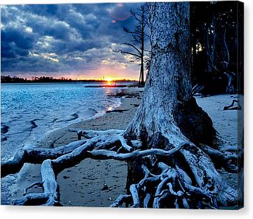 Canvas Print featuring the photograph Motivational Landscape-faith Hope Overcome-tree Sunset by Eszra Tanner