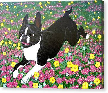 Moulty In The Meadow Canvas Print by Lori Ziemba