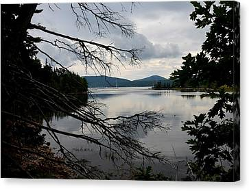 Mount Desert Island Bar Harbor Canvas Print by Toby McGuire