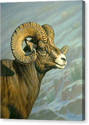 Mount Everts Ram Canvas Print by Paul Krapf