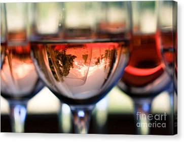 Mount Hood In A Wine Glass Canvas Print by Cari Gesch