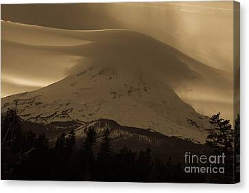 Mount Hood In The Clouds Canvas Print by Cari Gesch