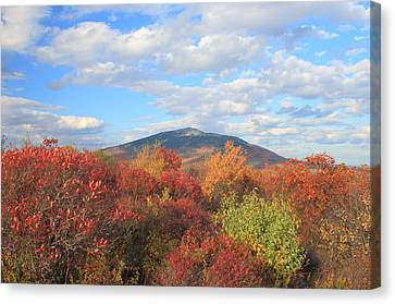 Mount Monadnock From Gap Mountain In Autumn Canvas Print by John Burk