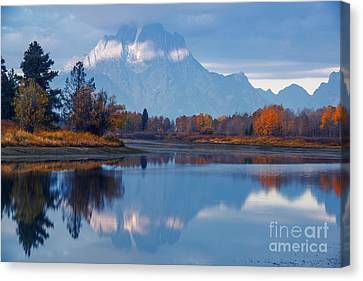 Mount Moran From Oxbow Bend In Autumn Canvas Print by Vishwanath Bhat