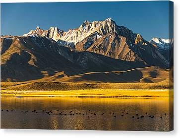 Mount Morrison At Sunrise Canvas Print