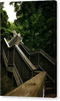 Mount Pisgah Stairs Canvas Print by Michelle Calkins