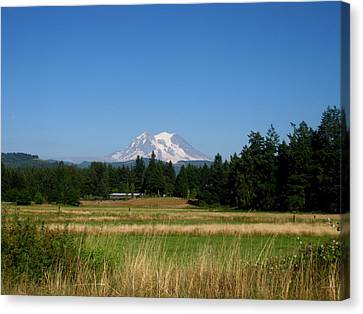Mount Rainier 8 Canvas Print by Kathy Long