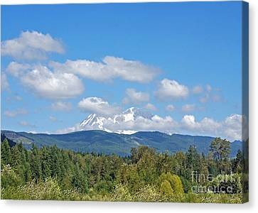 Mount Rainier As Viewed From The West Canvas Print by Connie Fox