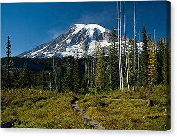 Canvas Print featuring the photograph Mount Rainier From Snow Lake Trail by Bob Noble Photography