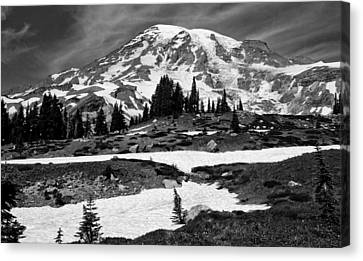 Mount Rainier From The Paradise Visitor Center Canvas Print by Bob Noble