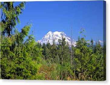 Canvas Print featuring the photograph Mount Rainier by Gordon Elwell