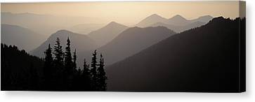 Mount Rainier National Park Wa Usa Canvas Print by Panoramic Images