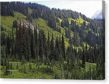 Canvas Print featuring the photograph Mount Rainier Ridges And Fir Trees.. by Tom Janca