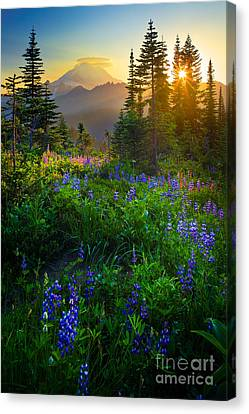 Mountains Canvas Print - Mount Rainier Sunburst by Inge Johnsson