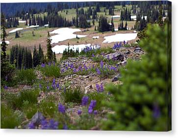 Canvas Print featuring the photograph Mount Rainier Wildflowers by Bob Noble Photography