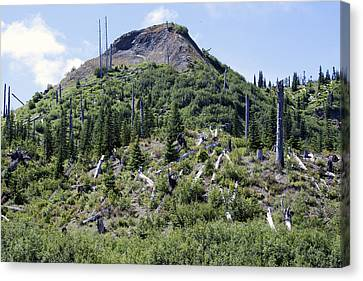 Mount Saint Helens National Volcanic Monument - 0029 Canvas Print