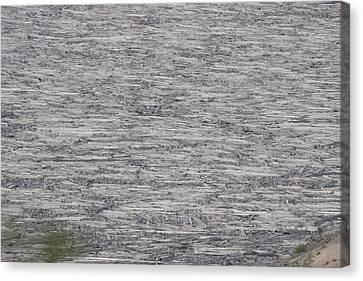 Mount Saint Helens National Volcanic Monument - 0032 Canvas Print