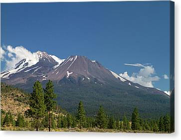 Mount Shasta North Facing Side Located Canvas Print by David R. Frazier