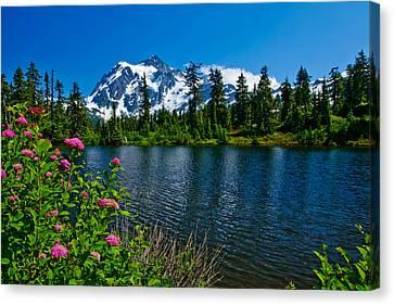 Mount Shuksan And Highwood Lake Canvas Print by Dan Mihai