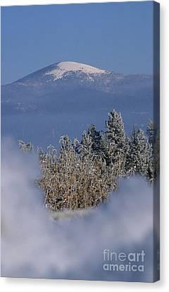 Mount Spokane Canvas Print by Sharon Elliott