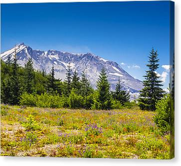 Mount St. Helens Canvas Print