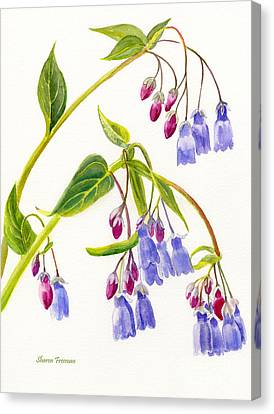 Close Up Canvas Print - Mountain Bluebells Vertical Design by Sharon Freeman