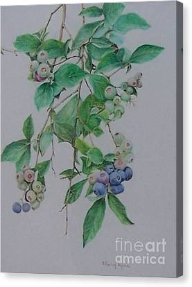Mountain Blueberries Canvas Print by Mary Lynne Powers