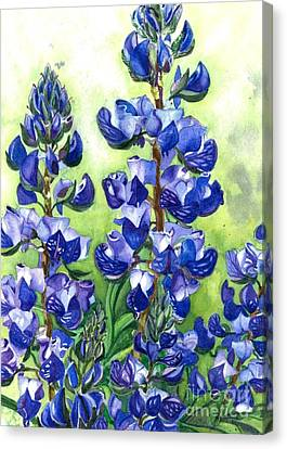 Canvas Print featuring the painting Mountain Blues Lupine Study by Barbara Jewell