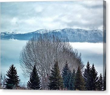 Mountain Cloud Canvas Print