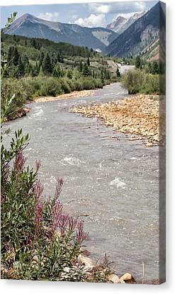 Mountain Creek Canvas Print by Melany Sarafis