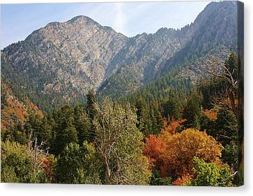 Mountain Escape Canvas Print by Bruce Bley