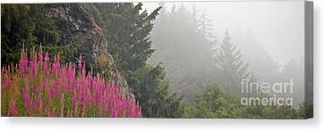 Mountain Fog Canvas Print by Chuck Flewelling