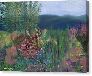 Mountain Garden Canvas Print by Dana Strotheide
