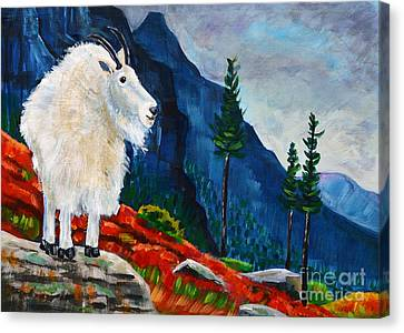Mountain Goat Country Canvas Print by Harriet Peck Taylor
