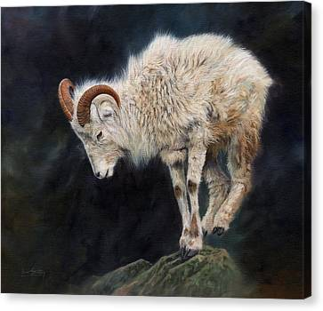 Mountain Goat Canvas Print - Mountain Goat by David Stribbling