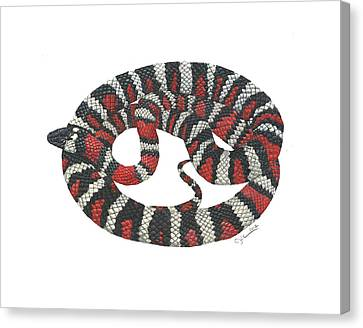 Mountain King Snake Canvas Print