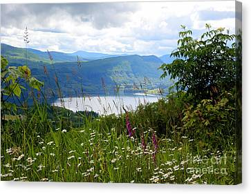 Mountain Lake Viewpoint Canvas Print by Carol Groenen