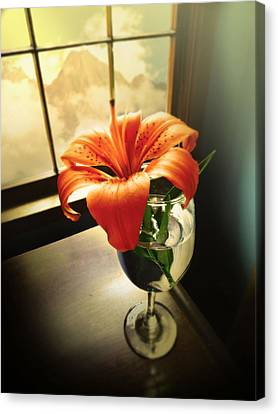 Mountain Lily Canvas Print