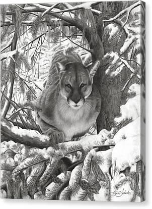 Mountain Lion Hideout Canvas Print