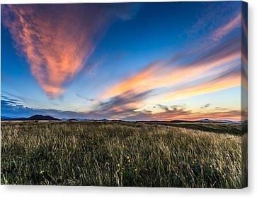Mountain Meadow Sunset Canvas Print by Jonathan Gewirtz