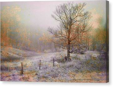 Mountain Mist II Canvas Print by William Beuther