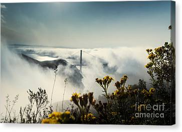 Sausalito Canvas Print - Mountain Of Dreams by Along The Trail