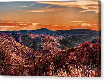 Mountain Of  Joy Canvas Print