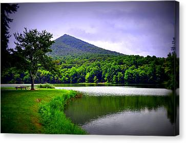 Mountain Reflection Canvas Print by Gail Butler