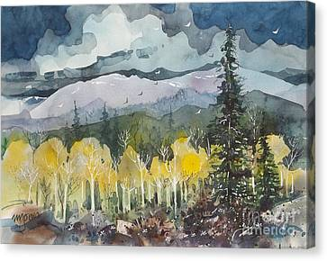 Mountain Storm Canvas Print by Micheal Jones