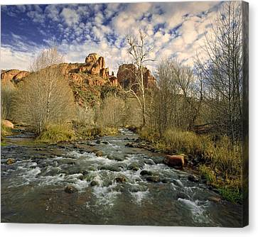 Mountain Stream By Cathedral Rock In Sedona Arizona Canvas Print