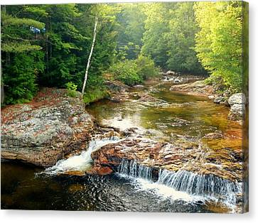 Canvas Print featuring the photograph Mountain Stream by Elaine Franklin