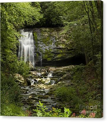 Mountain Stream Falls Canvas Print