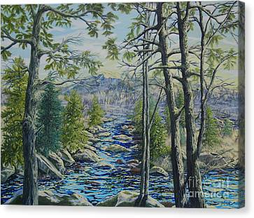 Mountain Stream II Canvas Print
