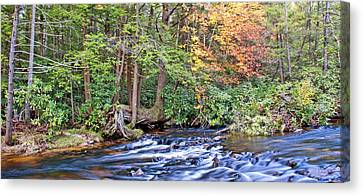 Canvas Print featuring the photograph Mountain Stream In Autumn Pocono Mountains Pennsylvania by A Gurmankin